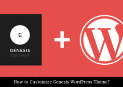 Customize Genesis Wordpress Theme
