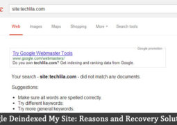 Google Deindexed My Site: 12 Reasons and Recovery Solutions