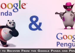 Recover From The Google Panda And Penguin Update