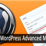 WordPress Advanced Menu Options